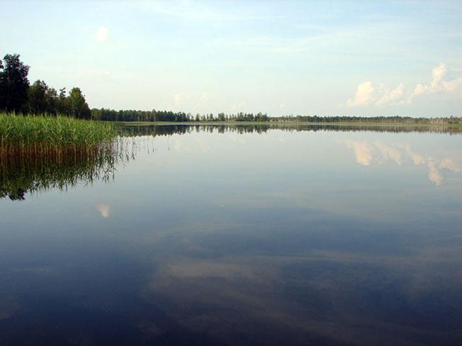 Рівненський природний заповідник